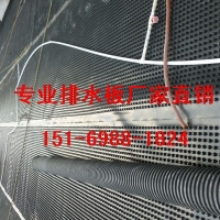现货|蓄排水板衡水2.5公分1.2公分3公分车库排水板